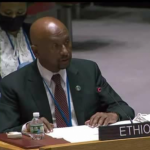 Ethiopia Urges Egypt, Sudan to Understand that Resolution Won't Come from UNSC