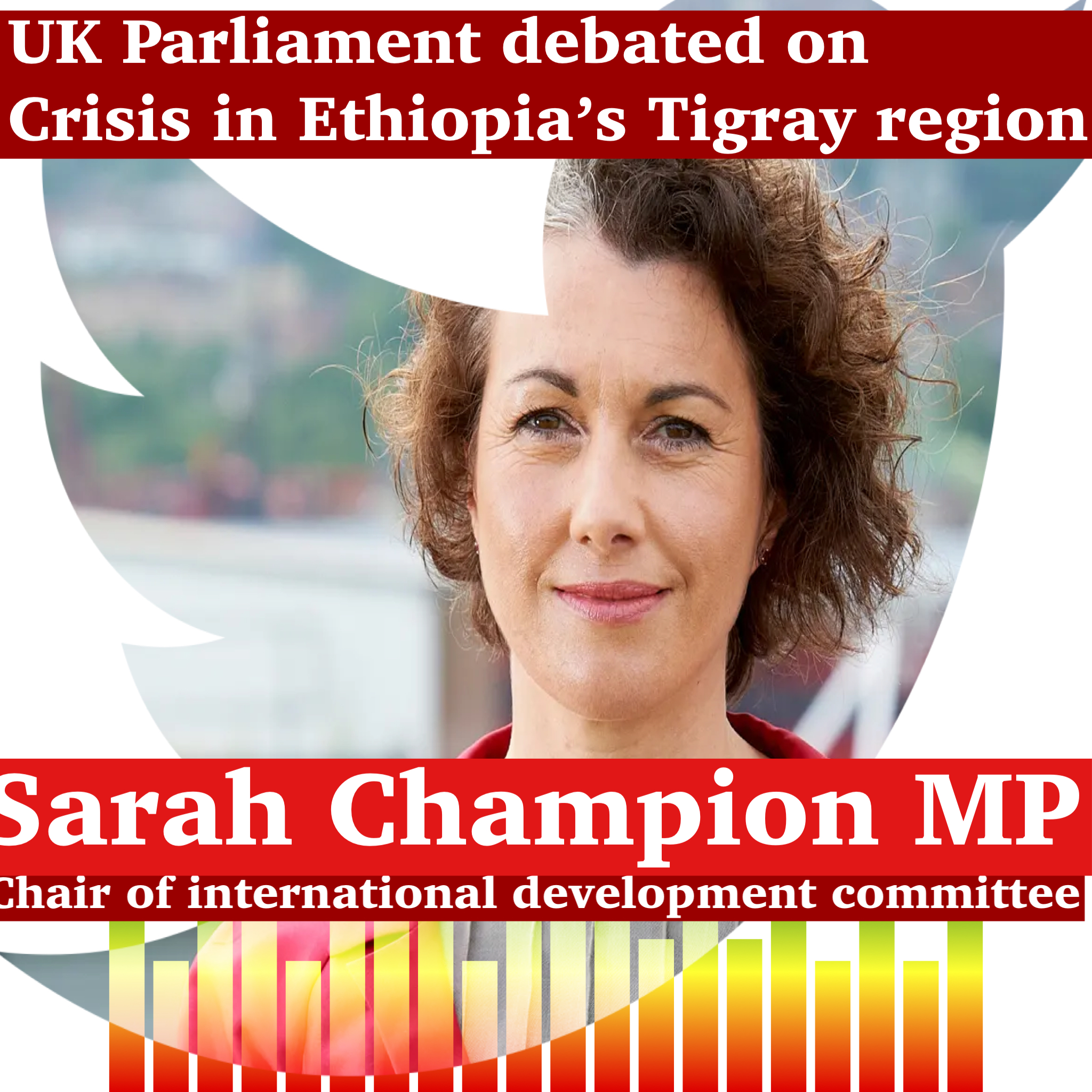 Parliamentary debate on crisis in Ethiopia's Tigray region